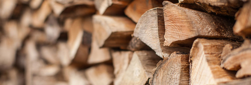 bois de chauffage en bûche